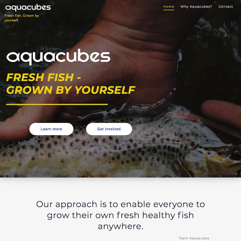 aquacubes