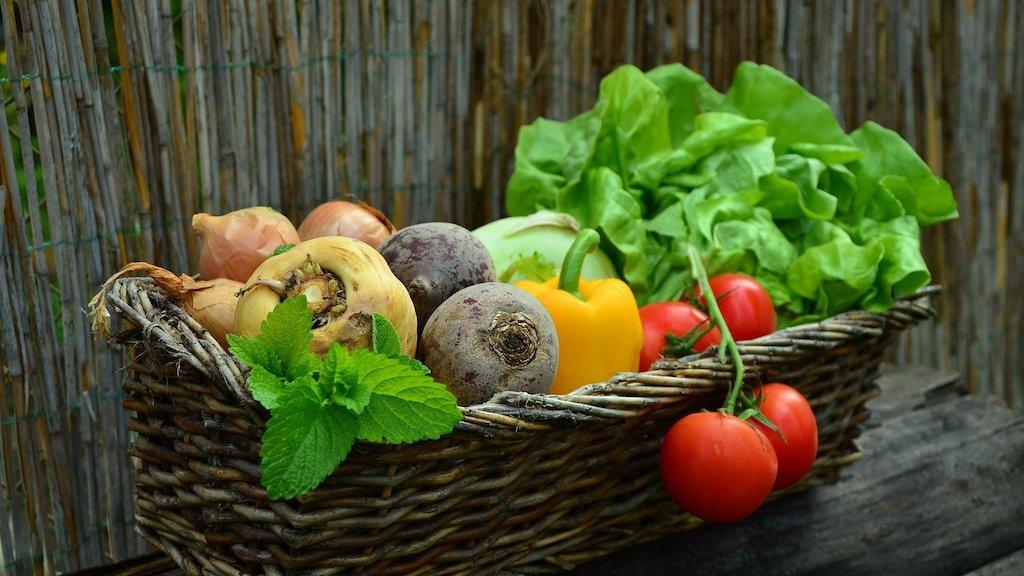 vegan vegetarisch Klimawandel
