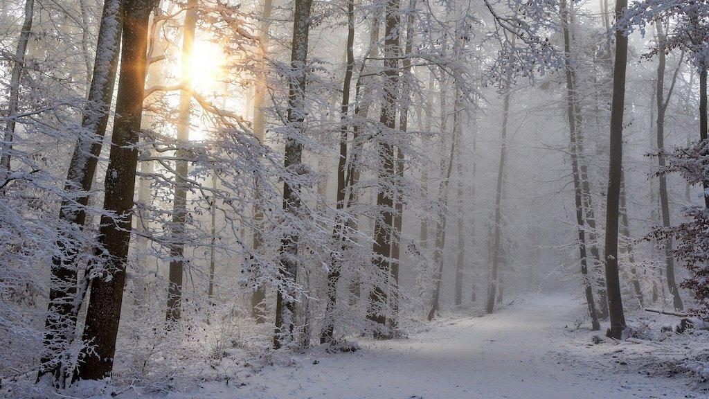 CSU Winterklausur